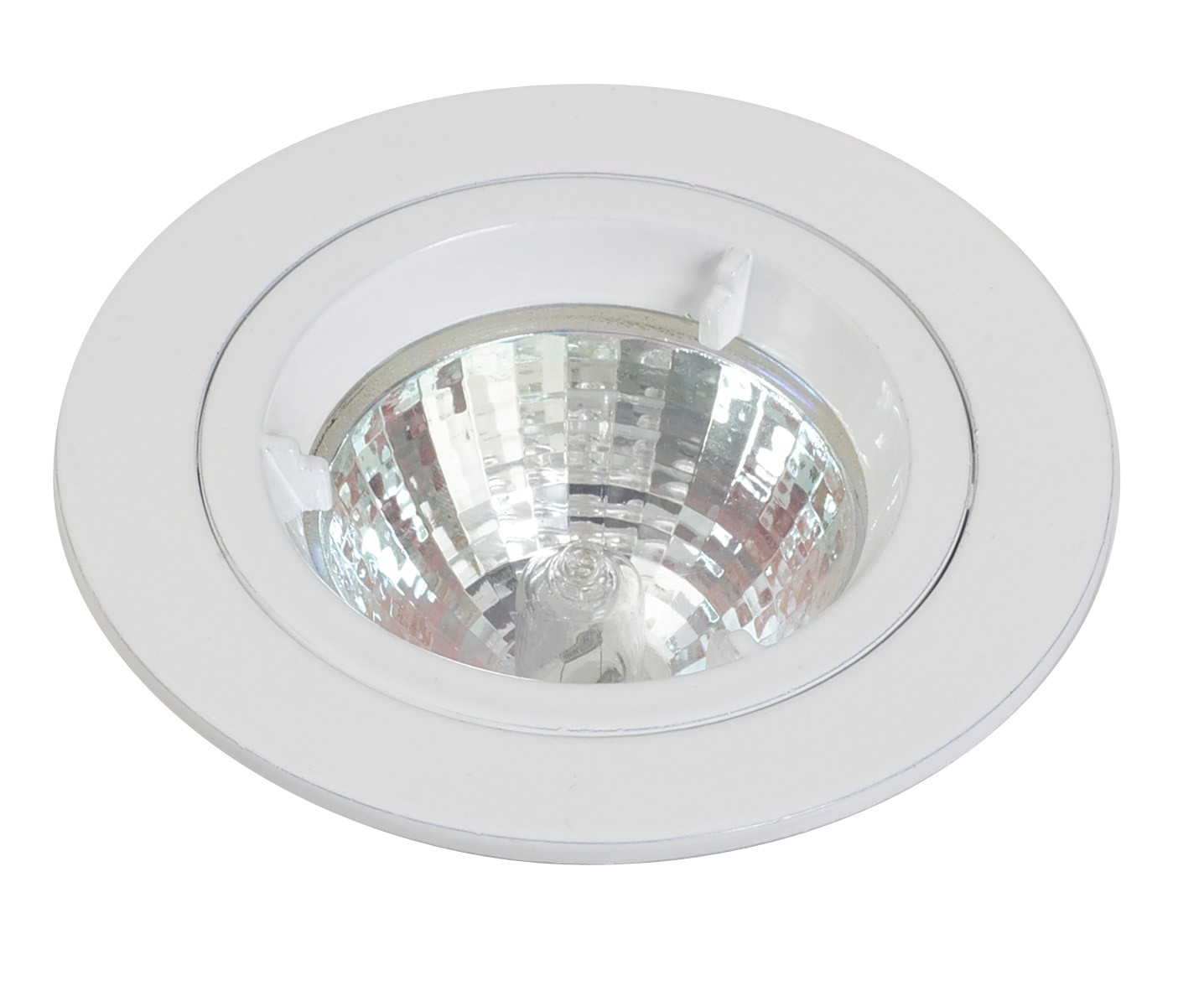 Ceiling downlight mains cast fixed stainless steel